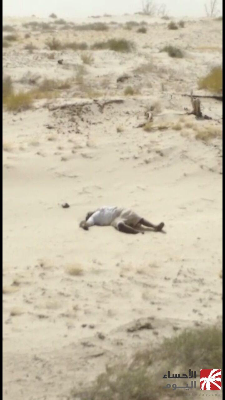 بالفيديو.. العثور على جثة لأحد سكان القرى الشرقية في منتزه ...