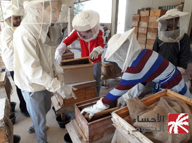"""طلاب العلوم الزراعية يجتازون دورة """"تربية نحل العسل"""" بمحطة التدريب"""